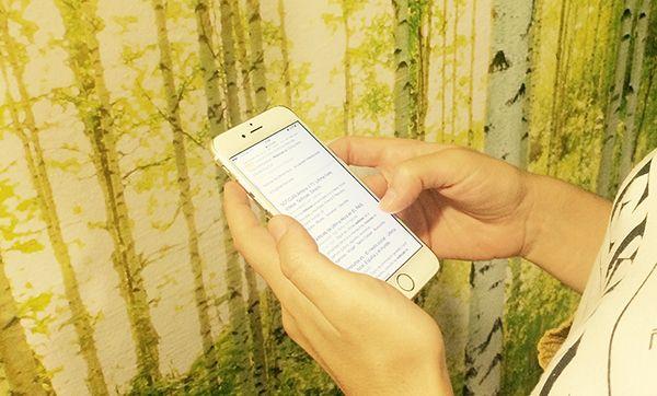 Búsquedas en Smartphones